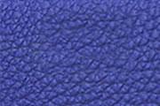 ブルーエレクトリック/BLEU ELECTRIQUE(7T)