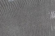 グリスフォンセ/GRIS FONCE(84)